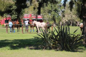 stay at an estancia