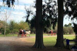 autumn day at estancia or polo club