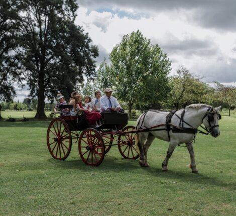 sulky casamiento estancias campo buenos aires